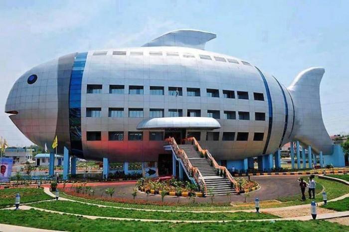 1461489 611741915552111 27918497 n 700x465 المتحف الوطني للأسماك والحياة البحرية في الهند