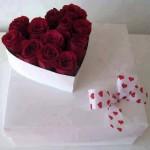 الحب مشاعر من القلب