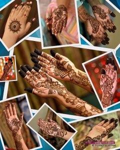 Top Indian Mehndi Design Images 2013 2014 2 240x300 أكبر مجموعة صور نقش حناء عربي و هندي و باكستاني حديث و متنوع 2016