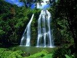 صور طبيعية لشلالات والمياة تعكس جمال الطبيعة عليها