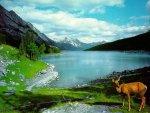 elmstba.com 1457069807 860 150x113 اجمل مناظر طبيعية فى العالم 2017 صور مناظر طبيعيه خضراء HD خلفيات خلابة جميلة جداً 2018