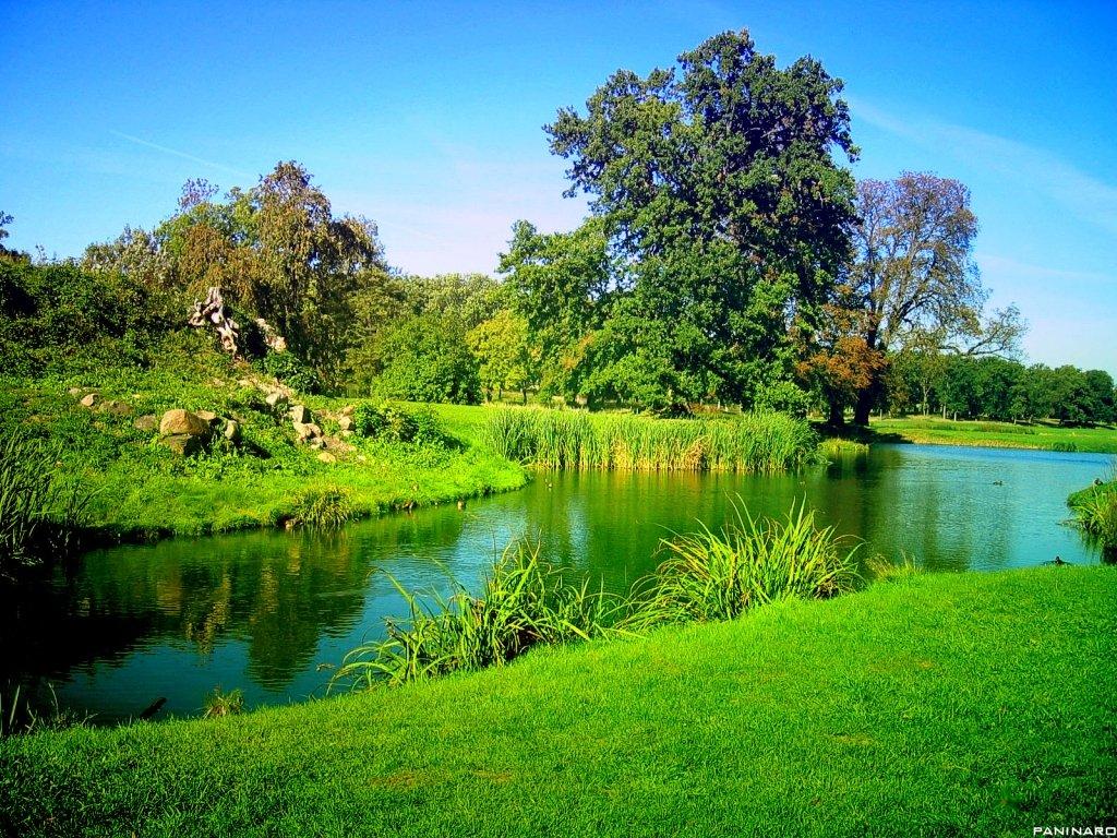 elmstba.com 1457069807 985 اجمل مناظر طبيعية فى العالم 2017 صور مناظر طبيعيه خضراء HD خلفيات خلابة جميلة جداً 2018