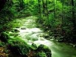elmstba.com 1457069809 742 150x113 اجمل مناظر طبيعية فى العالم 2017 صور مناظر طبيعيه خضراء HD خلفيات خلابة جميلة جداً 2018