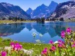 elmstba.com 1457069811 136 150x113 اجمل مناظر طبيعية فى العالم 2017 صور مناظر طبيعيه خضراء HD خلفيات خلابة جميلة جداً 2018
