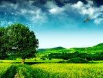 elmstba.com 1457069814 623 150x113 اجمل مناظر طبيعية فى العالم 2017 صور مناظر طبيعيه خضراء HD خلفيات خلابة جميلة جداً 2018