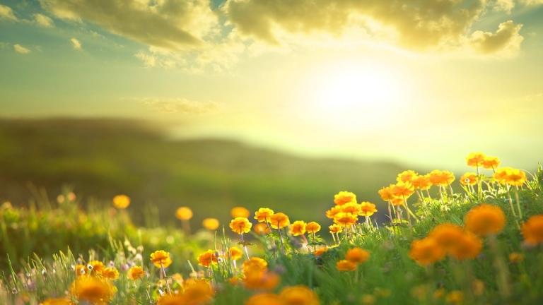 Image result for Enam Amalan Pagi Hari yang Membuat Hidup Lebih Berkat