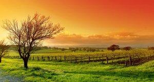 landscapes 4 300x161 مناظر طبيعية قمة في الروعة والخيال