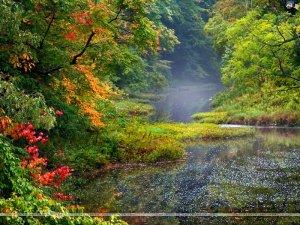 landscapes 5 300x225 مناظر طبيعية قمة في الروعة والخيال