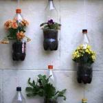 افكار ابداعية للزراعة فى المنزل