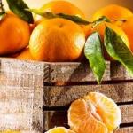 فوائد اليوسفي لمرضى السكري
