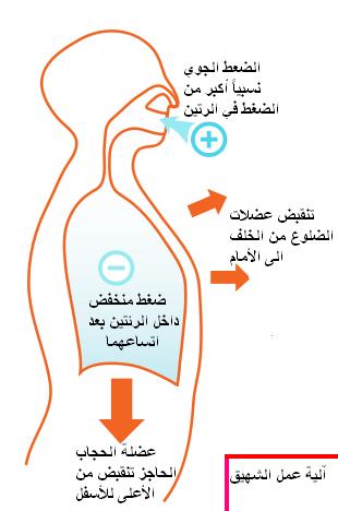 Deep breathing2 علاج التهاب الرئة بالاعشاب الإلتهاب الرئوي .. كورونا أحد فيروسات التي تسبب الالتهاب الرئوى