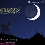 خلفيات رمضان 2014 خلفيات رمضان كريم خلفيات شهر رمضان