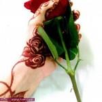 نقش حناء جميل روعه لأم محمود سترة الوردة بين الاصابع حركة حلوة