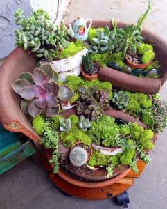 broken flower pot fairy gardens 4 241x300 استغلال الأشياء وتحويلها الى ديكور لتزين المنزل
