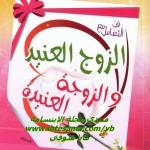 تحميل كتاب فن التعامل مع الزوج العنيد والزوجة العنيدة ، د. ياسر نصر ، حصريا