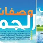 تحميل كتاب وصفات الجمال ، دكتور عادل عبد العال ،
